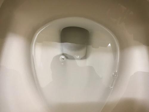 トイレ黒ずみ水垢洗剤